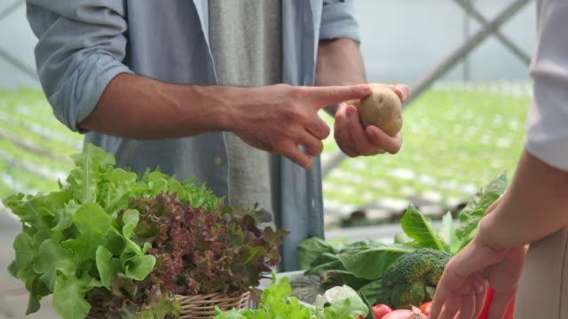 vídeos y material grabado en eventos de stock de 4k slow motion customer visitando granjas de verduras orgánicas y comprando verduras orgánicas con el propietario de la granja de verduras - receta instrucciones