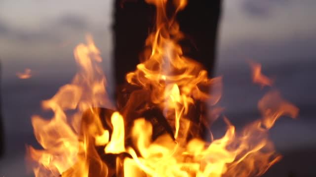 焚き火のスローモーションの詳細ショット - 薪点の映像素材/bロール