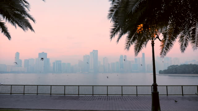 stockvideo's en b-roll-footage met slow motion vlucht van meeuwen boven quay kade aan het water. fance en gebouwen op blauwe mist op de horizon. - perzische golfstaten