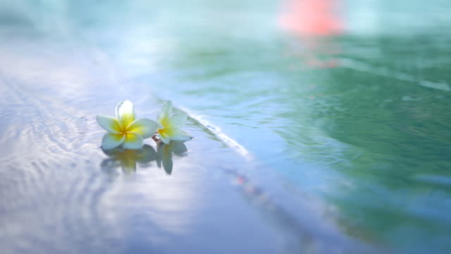 Slow motion, Flowers by the pool, waves impact slowly. - vídeo