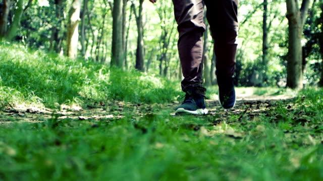 人間と森林の自然道の上を歩くのスローモーション映像 ビデオ