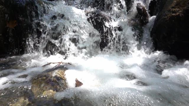 小さな滝に近づくスローモーション。 - 湧水点の映像素材/bロール
