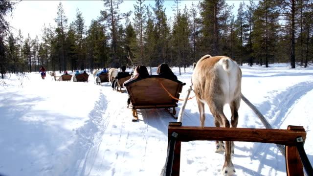 stockvideo's en b-roll-footage met 4k slow motion: vakantie activiteit. familie rijden rendier slee rijden in rovaniemi, finland - rendier