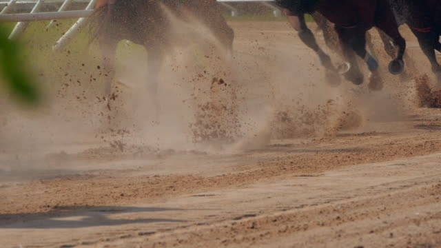 yavaş çekim at yarışı - horse racing stok videoları ve detay görüntü çekimi