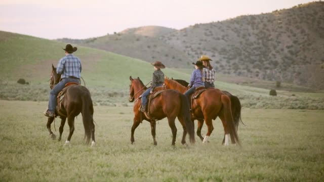 slow motion horses and cowboys in utah usa - ranch video stock e b–roll