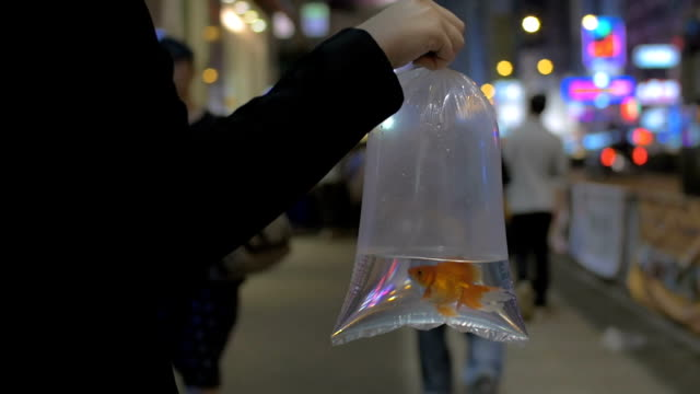 Slow motion in Hong Kong, China on a busy street girl holding a transparent bag with water and goldfish video