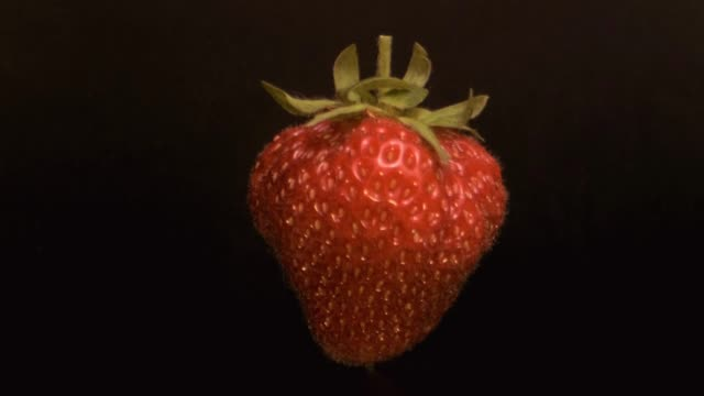 Slow motion - Levitating fresh juicy strawberry. Rotating ripe strawberry flying in the air isolated on black background. Close-up, Camera rotation 360 degrees.