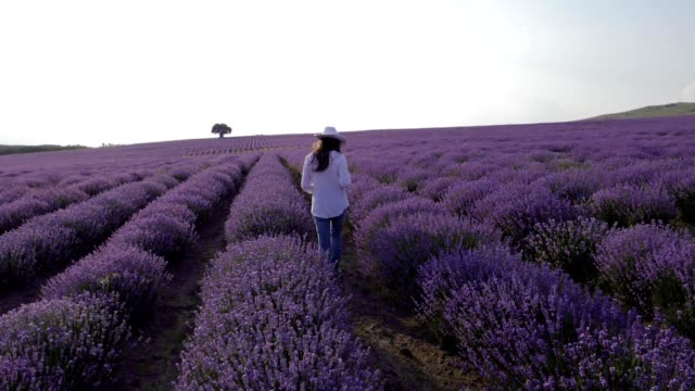 Slow motion of a Young farmer woman in her lavender field, working businesswoman in agriculture, woman's day, emancipation, dressed in white