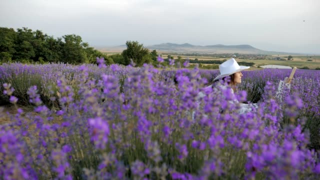 Slow motion of a Young farmer woman in her lavender field, working businesswoman in agriculture, woman's day, painting in nature, emancipation, dressed in white