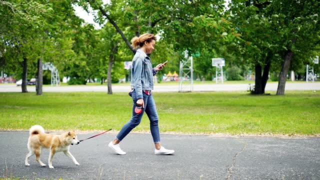 도시 공원에 그녀의 혈통의 개를 산책 하 고 잔디와 나무 표시와로 따라가 스마트폰을 사용 하 여 밝은 아프리카계 미국인 여자의 슬로우 모션. - 공원 스톡 비디오 및 b-롤 화면