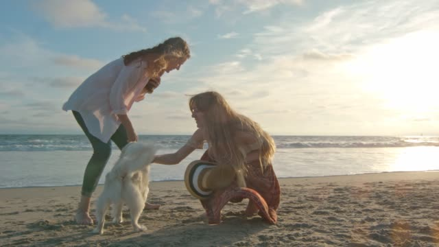 Slow motion of mother and teenage daughter playing with their dog by the ocean video