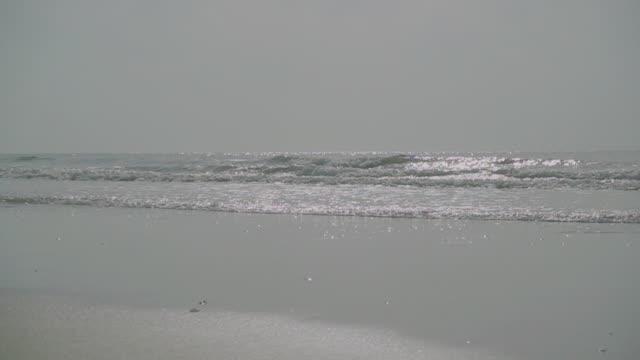 slow-motion der ozeanwelle am strand sand tropischen hua hin. - horizont über wasser stock-videos und b-roll-filmmaterial