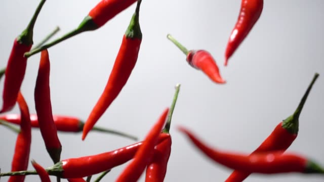 Slow motion of Red chilli pepper flying up Slow motion of Red chilli pepper flying up on white background chili pepper stock videos & royalty-free footage