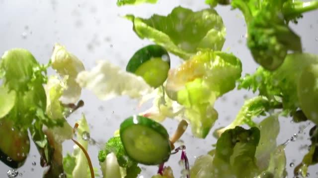 slow motion av stänk grön sallad som flyger upp - sallad bildbanksvideor och videomaterial från bakom kulisserna