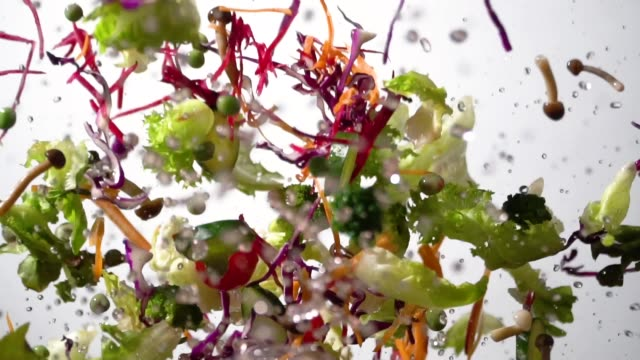 Slow motion of Splashing Salad flying up