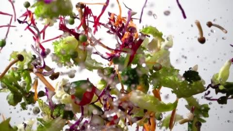 langsame bewegung des splash-salads fliegt auf - gemüse stock-videos und b-roll-filmmaterial