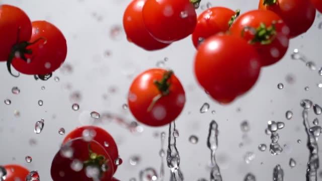 slow motion of splashing tomato flying up - томат овощ стоковые видео и кадры b-roll