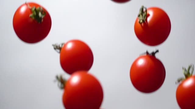 Slow motion of Tomato flying up Slow motion of Tomato flying up on white background ingredient stock videos & royalty-free footage