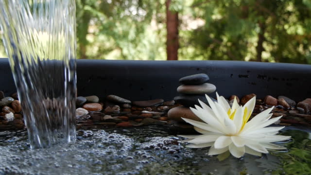 Slow motion of water falling near balance stones and white lotus flower