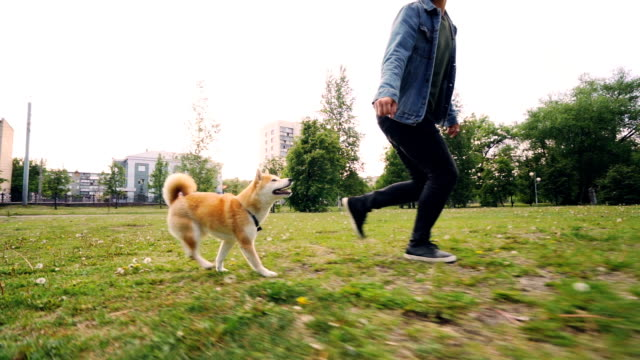 Slow motion of young man loving dog owner running with puppy in city park, happy pet is enjoying freedom and nature. Urban landscape is visible.