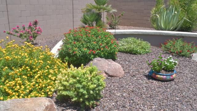 Slow Motion Pan of an Arizona Backyard Garden in HD