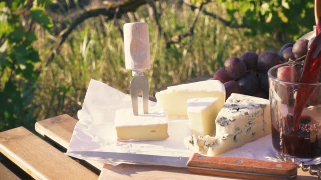 Slow motion picnic outdoors in vineyards video