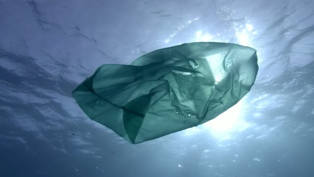 Slow Motion, Plastic pollution in the ocean, green plastic bag slowly drifting underwater surface in the sun rays. Underwater shot, Low-angle shot, Contre-jour