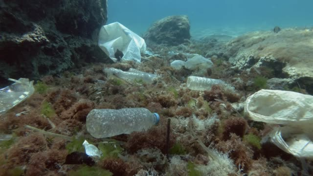 Slow motion. Plastic pollution of the ocean bottom. Bottles, bags and other plastic debris on seabed. Tropical fishes swims over the sea bottom covered with a lot of plastic garbage. Movement forward.