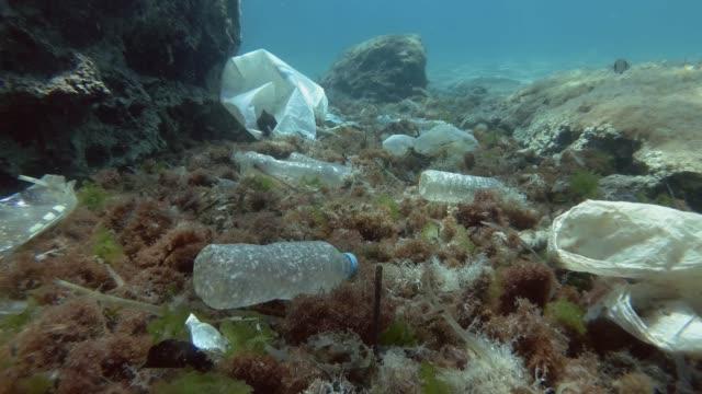 vídeos y material grabado en eventos de stock de a cámara lenta. contaminación plástica del fondo del océano. botellas, bolsas y otros residuos plásticos en el fondo marino. los peces tropicales nadan sobre el fondo del mar cubierto con una gran cantidad de basura plástica. movimiento hacia adelant - contaminación ambiental