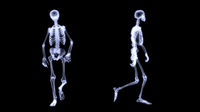 Slow motion radiography animation of a human skelegon walking. 3D rendering illustration, radiography of a human skelegon walking. Slow motion. Front and Side view. x ray image stock videos & royalty-free footage