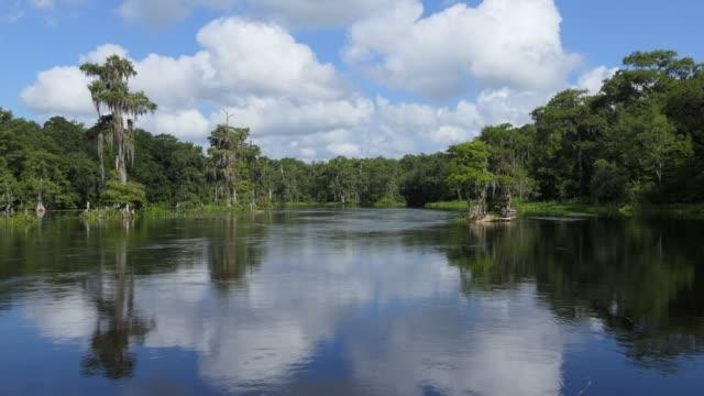 慢動作河巡航在沃庫拉泉州立公園佛羅里達州 - 州立公園 個影片檔及 b 捲影像