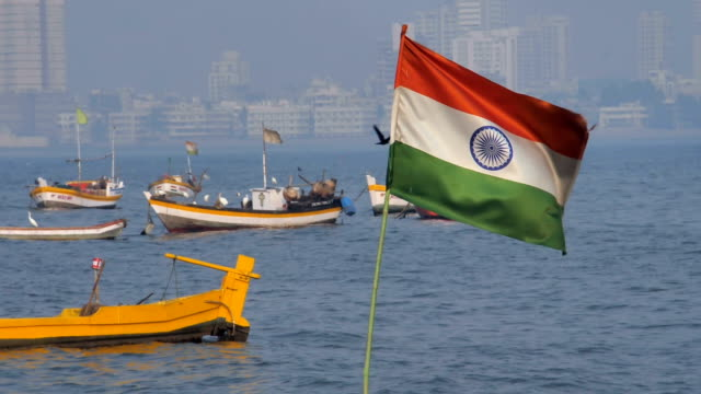 Slow motion shot of a bird flying and Indian flag waving mounted on a boat video
