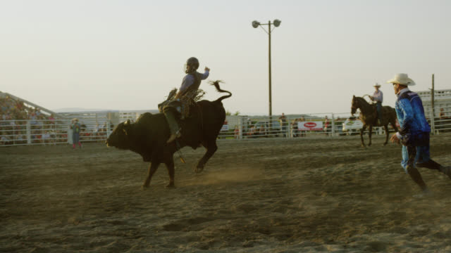 Slow Motion Shot of a Bull Rider Competing in a Bull Riding Event in a Stadium Full of People while the Rodeo Clown Watches at Sunset