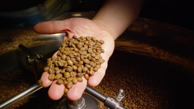 медленное движение выстрел из руки обжарки кофе оператора собирание handful кофейных зерен из большого, кофе жаровня охлаждения tray и показ кам - кофеин стоковые видео и кадры b-roll