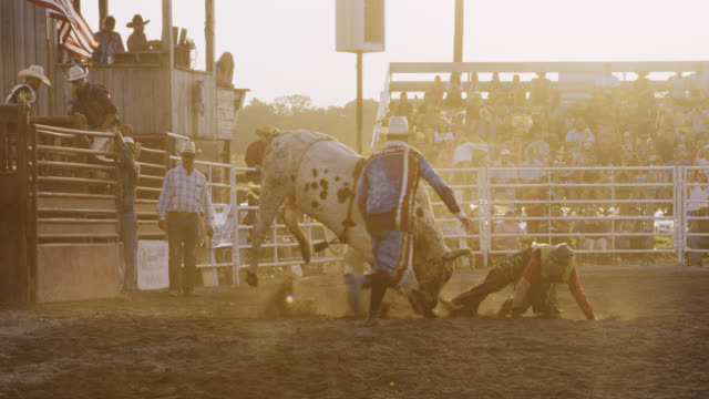 Slow Motion Shot of a Male Bull Rider Competing in a Bull Riding Event before Being Thrown from the Bull's Back in a Stadium Full of People at Sunset