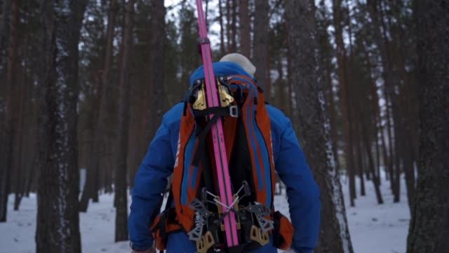 後ろから森の中をハイキングするスキーヤーのスローモーションショット - 後ろ姿点の映像素材/bロール