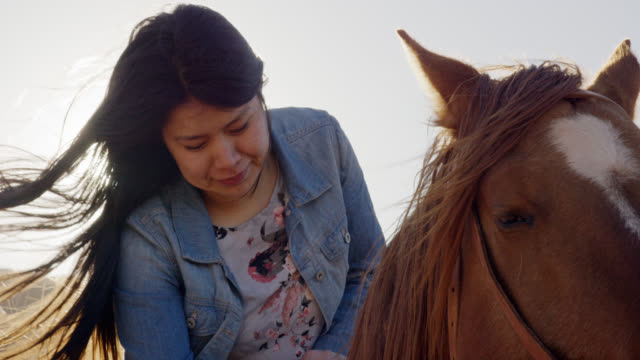 Slow Motion Shot of a Teenaged Native American Girl (Navajo) Petting Her Brown Horse on a Bright, Clear Day Slow Motion Shot of a Teenaged Native American Girl (Navajo) Petting Her Brown Horse on a Bright, Clear Day minority groups stock videos & royalty-free footage