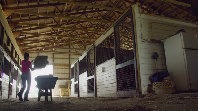 Slow Motion Shot of a Woman in Her Twenties Opening a the Door of a Horse Stall and Throwing in Some Hay from a Wheelbarrow for Her Horse to Eat in a Barn on a Farm