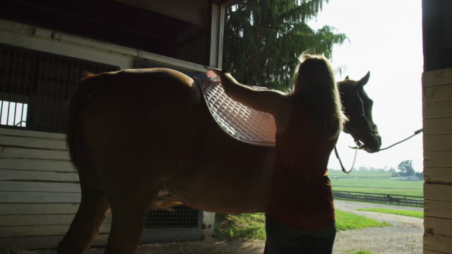 Slow Motion Shot of a Young Woman in Her Thirties Placing a Blanket on Her Brown Horse's Back in a Barn with Pasture in the Background on a Horse Farm