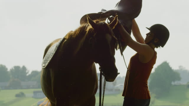 slow motion shot of a young woman in her thirties wearing a helmet putting a saddle on her brown horse's back on a sunny day on a horse farm with farmhouses and green pasture in the background - sella video stock e b–roll