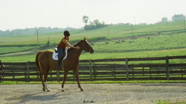 Slow Motion Shot of a Young Woman Wearing a Helmet Riding Her Brown Horse down a Dirt Road and Petting It next to a Fenced In Pasture on a Sunny Day on a Horse Farm