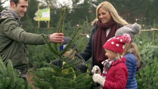 vídeos y material grabado en eventos de stock de toma en cámara lenta de familia de elegir árbol de navidad juntos - escoger