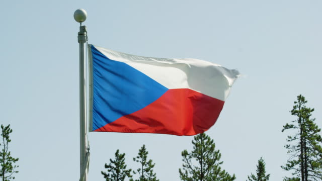 Slow Motion Shot of the Flag of Czech Republic Blowing in the Wind by Pine Trees on a Sunny Day