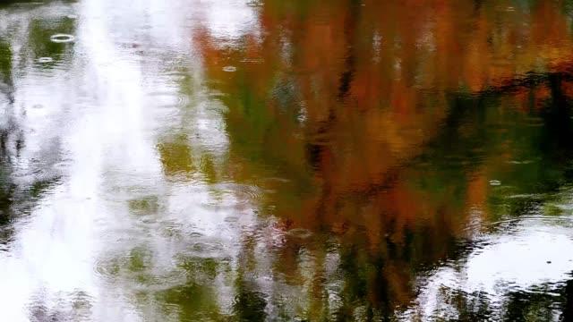 vídeos y material grabado en eventos de stock de disparo a cámara lenta de la lluvia, lluvia cayendo sobre el agua en el estanque con reflejo colorido de los árboles de arce, metraje 4k, concepto de fondo natural y ambiental. - charca