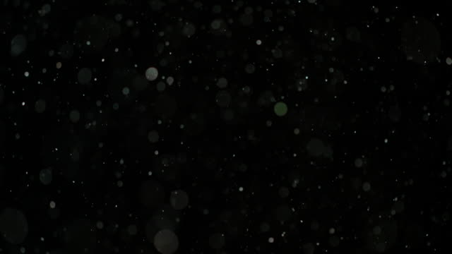 slow motion snow on black background - иней замёрзшая вода стоковые видео и кадры b-roll