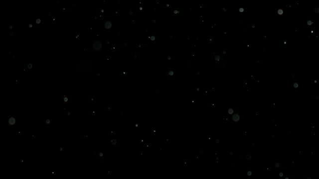 黒い背景にスローモーション雪 - 雪点の映像素材/bロール