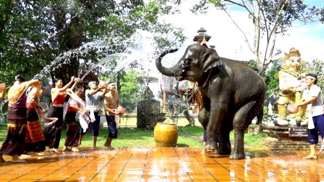 vídeos de stock, filmes e b-roll de câmera lenta: festival songkran - mulheres bonitas e homens desgaste traditionnel thai fantasia de espirrar água com elefante no fundo do templo - ano novo budista