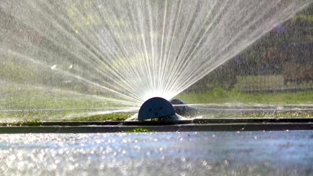 Ralenti: Pulvérisation d'eau sur l'arrière-cour VERT HERBE - Vidéo