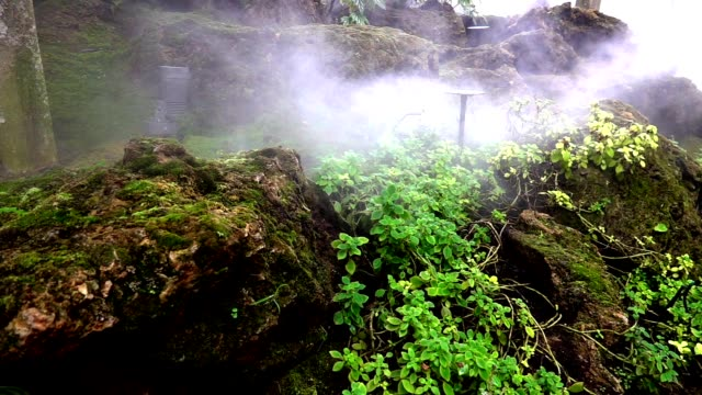 slow motion. Stones. rocks covered by moss and fog at shoping mall