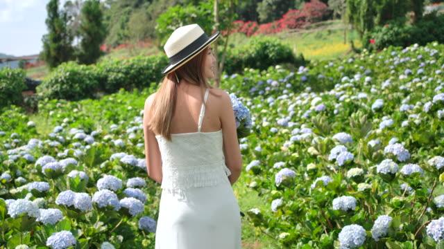 4k slow motion thai schöne frau die touristin sie reiste auf das hortensien feld. frische luft und sie ist glücklich - hortensie stock-videos und b-roll-filmmaterial